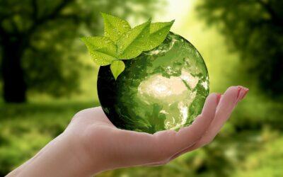 """Mondo aziendale e iniziative di CSR per creare """"Shared Value"""""""